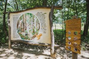 Lesní naučná stezka Mirakulum