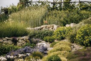 Naučné zahrady Mirakulum